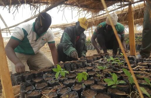 Miljøvekkelse i en misjonskirke i Kamerun i Vest-Afrika, en ressurs for KRLE faget