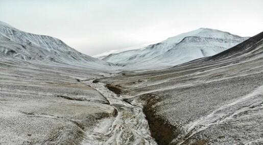Svalbard avslører den største massedøden