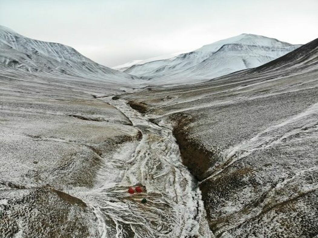 For 250 millioner år siden inntraff den aller største masseutryddelsen av liv. Deltadalen på Svalbard gir svar om hva som hendte.