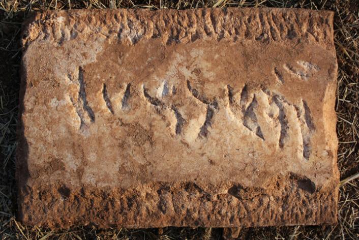 Denne hebraiske innskriften på en marmorplate fra romertidas Portugal er tolket som navnet Yehiel. Marmorplaten kan ha vært brukt til å dekke en grav etter tidas skikk. (Foto: Dennis Graen/FSU)