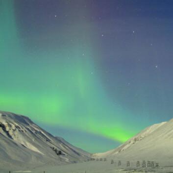 Nordlys over Svalbard. (Foto: UNIS)