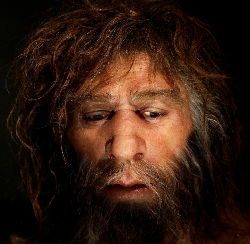 Hvorfor forsvant neandertalerne?
