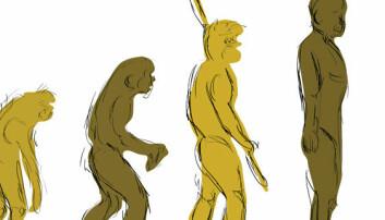 Derfor tror ikke folk på evolusjonsteorien