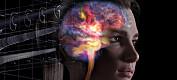 Fotoutstilling av hjernen
