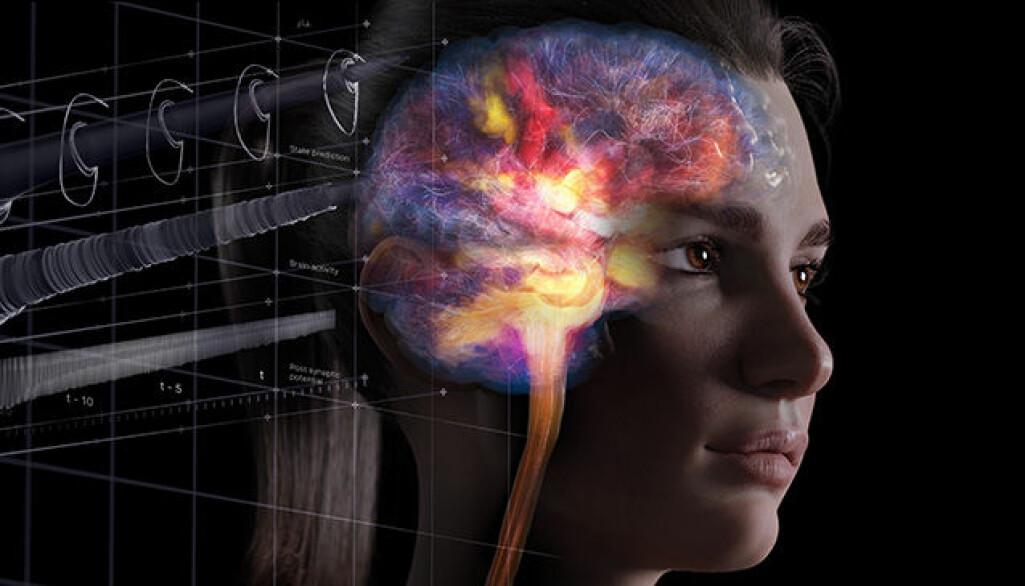 Fotoutstilling Hjernen din vises på Kong Olavs plass (Rådhusplassen) i Oslo  under Forskningsdagene 16.-27.september.