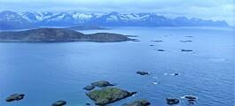Nytt studieprogram om miljøforurensing i Arktis