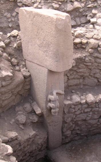 Skulptur av katteaktig dyr på stensøyle i Göbekli Tepe. (Foto: (Foto fra Wikimedia Commons))