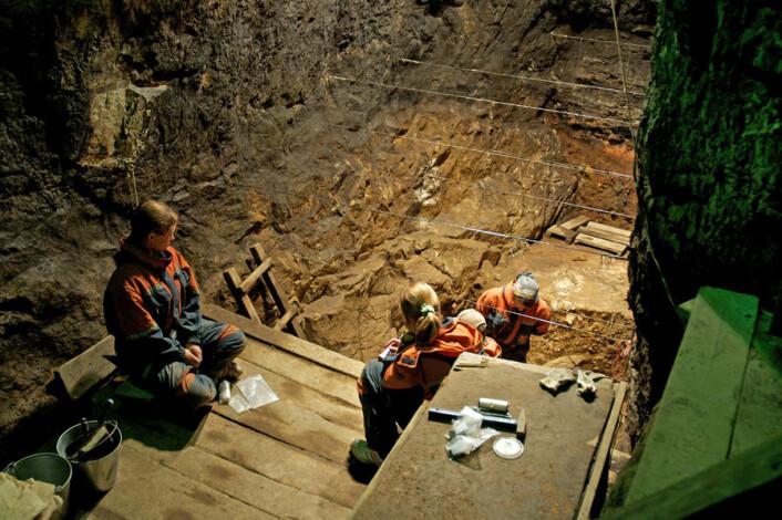 Arkeologene arbeider i Denisova-hulen. Lillefingeren av en denisovaner ble funnet i 2008. At den rommet helt ukjent DNA ble oppdaget seinere ved en tilfeldighet mens man egentlig lette etter neandertaler-DNA. (Foto: Max Planck Institute for Evolutionary Anthropology)
