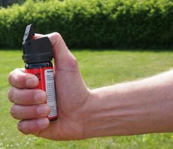 Pepperspray er ikke skadelig, men smertefull. Bruken er høyere hos tjenestemennene som er utrygge på sin egen arrestasjonsteknikk. (Foto: Anne Lise Stranden)