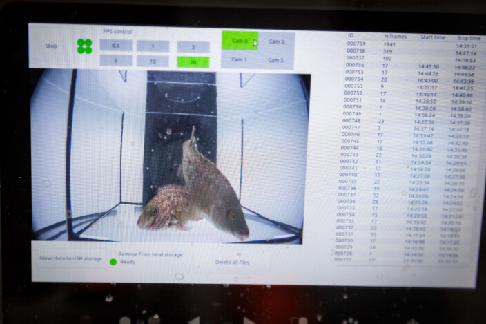 "The camera system ""Quadeye"" takes pictures for a library that can be used to train artificial intelligence to automatically recognise species."