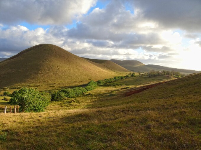 A typical landscape on Easter Island today; rounded extinct volcanoes covered in low vegetation.