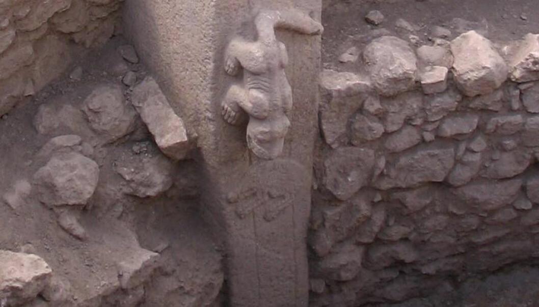 Skulptur av kattedyr på stensøyle i Göbekli Tepe. (Foto fra Wikimedia Commons)