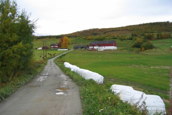 Driften ved Nord-norske gardsbruk er til en viss grad sårbar for et endret klima, viser et forskningsprosjekt. (Foto: Bioforsk)