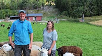 Synnøve og Øyvind driver gården sin regenerativt - men hva betyr det?