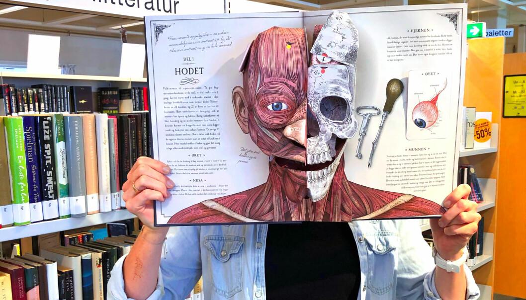 Har du noen gang lurt på hvor rasjonell hjerne du har? På Levanger bibliotek svarer ekspertene på «hjernedumme» spørsmål. Boksidene på bildet er fra «Menneskekroppen, en pop-up anatomiguide» av Richard Walker.