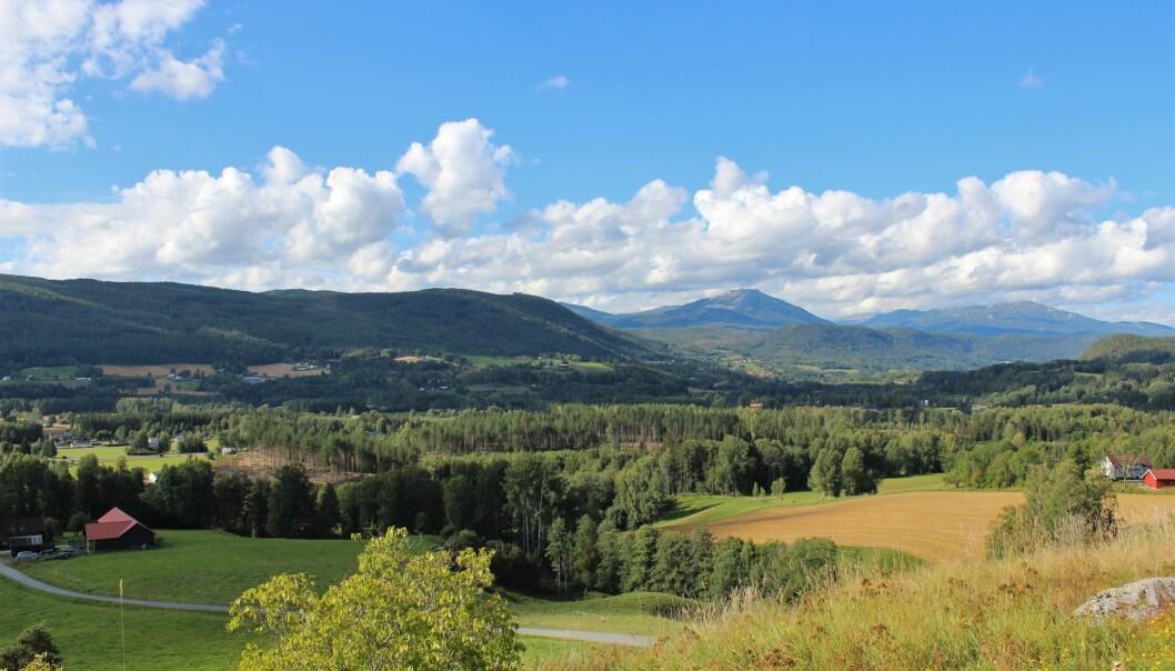 Det skal ikke stå på utsikten fra Håberg gård i Heddal i Telemark.