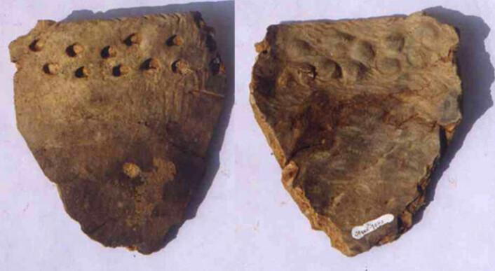 Kunsten å lage keramikk kan stamme fra Kina. Bildet viser skår av leirkar funnet i en hule i provinsen Jiangxi i det sentrale Kina. Ny datering sier at gjenstandene er mellom 20 000 og 19 000 år gamle og dermed de eldste i sitt slag i verden. (Foto: Science/AAAS)