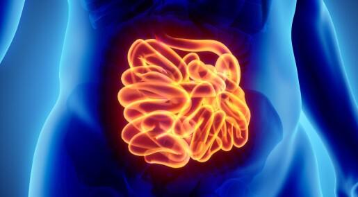 Økt forekomst av tynntarmskreft hos personer med cøliaki