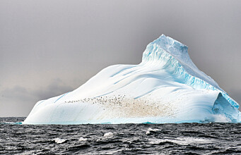 New study changes our understanding of cooling in Antarctica