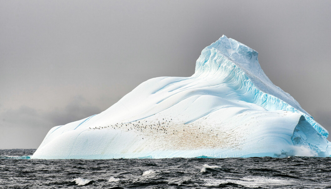 Iceberg with penguins in Antarctica