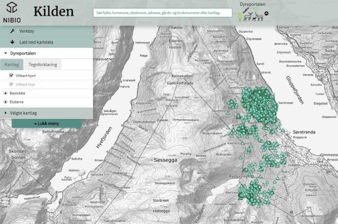 Dette kartet viser bevegelsene til en tre år gammel kolle i Gloppen kommune. Posisjonene er fra perioden 1. januar til 10. september 2020.