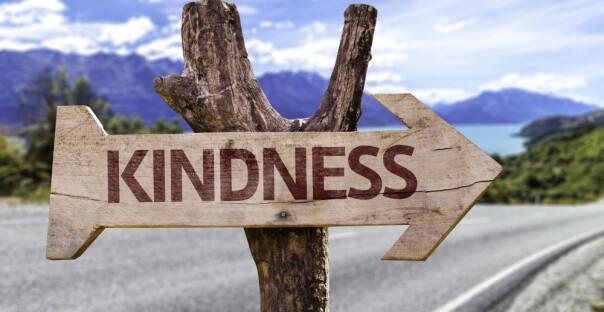 Vi trenger mer snillhet og raushet