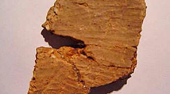 Verdens eldste leirkar er fra Kina