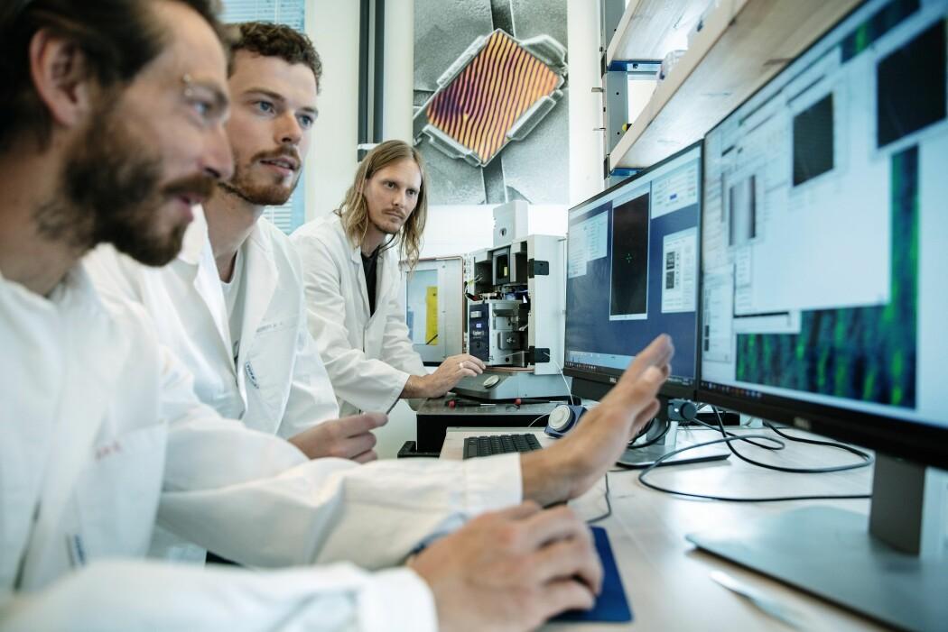 Donald Evans, Theodor Holstad og Dennis Meier jobber med å skape fremtidens nettverk i nanoskala.
