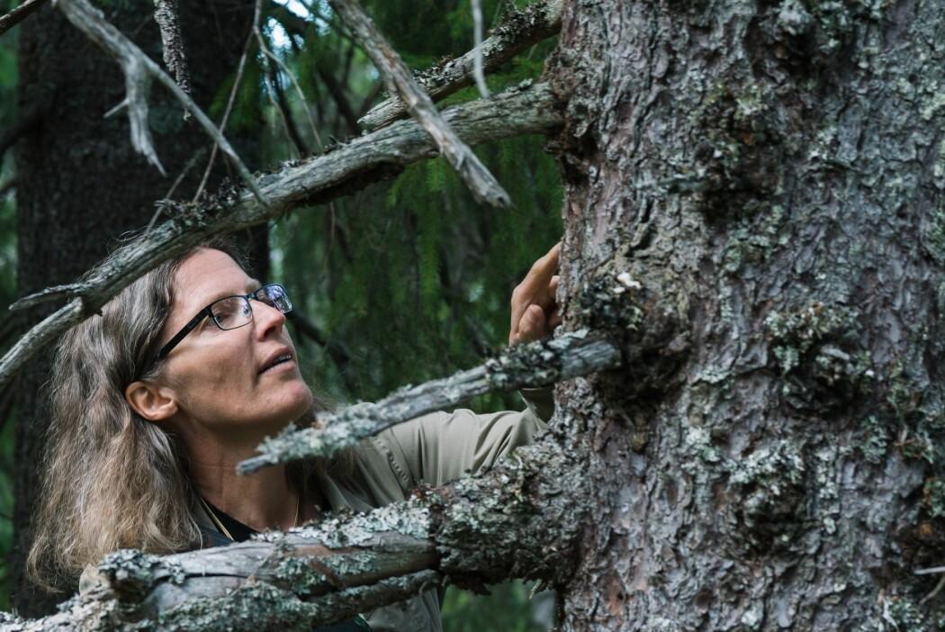 – Jeg synes det er utrolig gøy å få en sånn indikasjon at jeg har klart å nå fram med noen PR-kampanjer for de små, slimete og stemmeløse, kravlende organismene, sier årets vinner av Forskningsrådets formidlingspris, Anne Sverdrup-Thygeson.