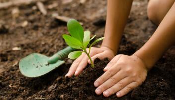 Det finnes fosfor i kloakken. Klarer vi å hente ut det, vil plantene bli glade. Det er som supermat for dem.