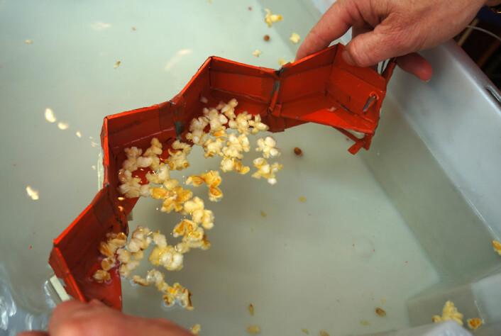 Modellen viser hvordan lensen kan foldes ut som et trekkspill for å fange opp oljesøl. Lensen har en vannrett bølgedemper, som demper bølger og vannvirvler nær lensen. Da blir faren mindre for at olje trekkes ned under og forbi lensen. (Foto: Arnfinn Christensen, forskning.no.)