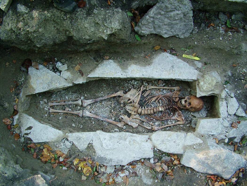Dette er levningene etter en kvinne funnet i en vikinggrav i Varnhem i Sverige. Levningene er blant de over 400 som ble gensekvensert i den nye studien.