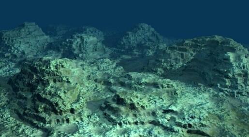 Fant et mylder av liv under havbunnen
