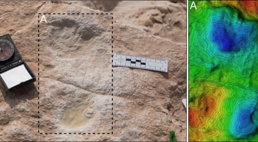 Dette er et av de tidligste sporene etter moderne mennesker på den arabiske halvøya