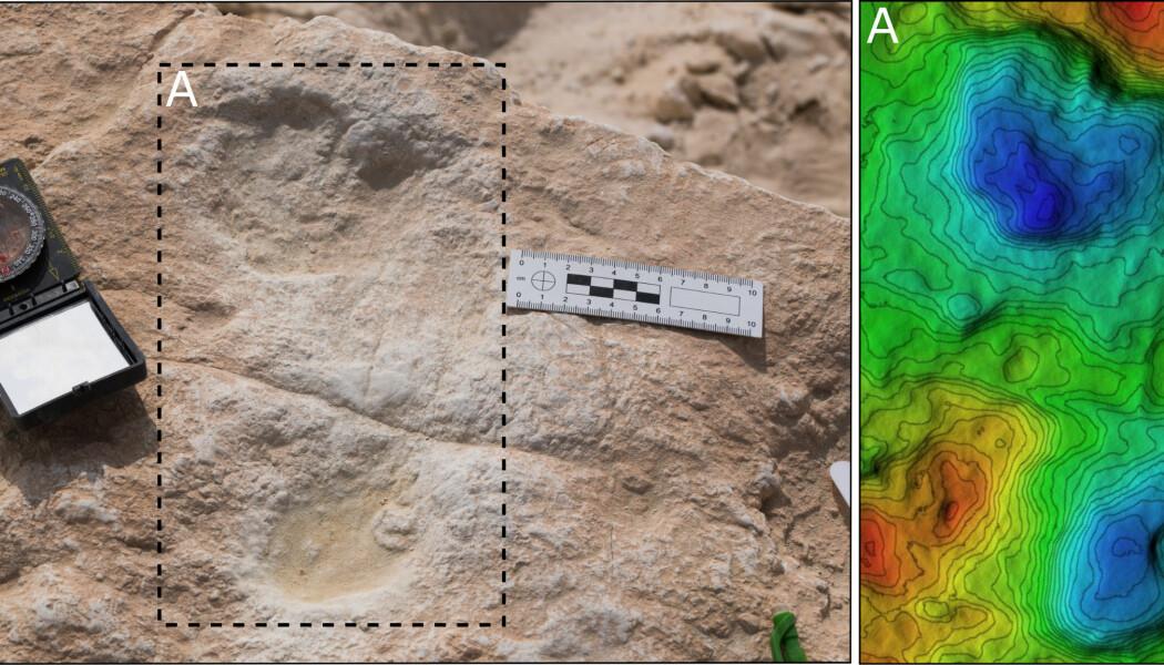 Dette mener forskerne er et mer enn et 110 000 år gammelt fotavtrykk fra et tidlig moderne menneske.