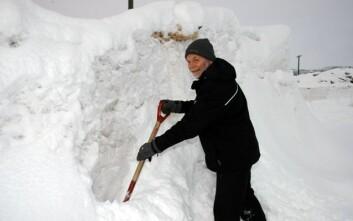 Forsker Tor Lunnan ved Bioforsk Øst Løken. (Foto: Jon Schärer)