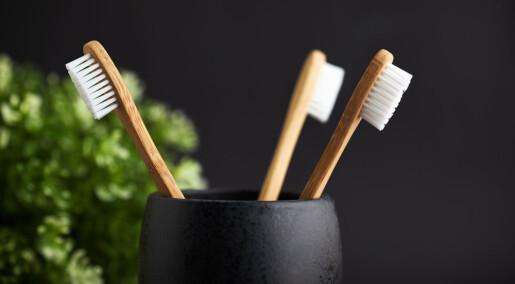 Mote-tannbørsten er ingen miljøvinner, ifølge ny studie