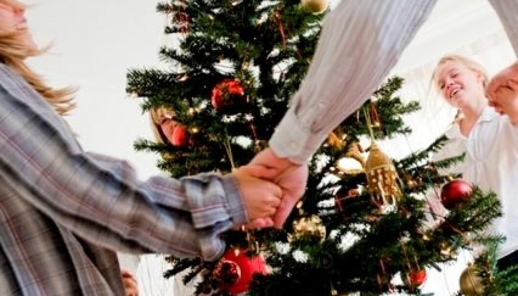 Juletreet - nytt liv etter jul