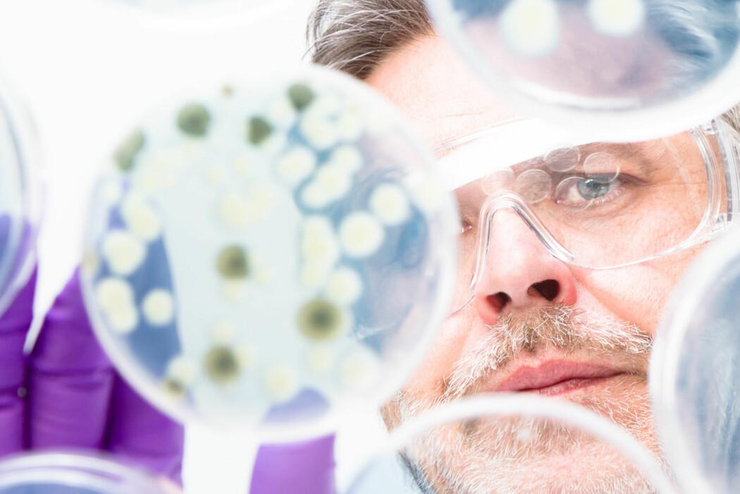 Miljøet blir utsatt for en kompleks miks av gener, bakterier, desinfeksjonsmidler og mye mer. Forskningen på feltet tar ikke nok høyde for dette, mener eksperter ved VKM.