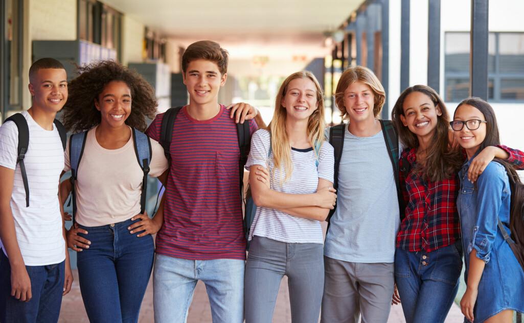 I datamaterialet inngår svar fra 211 500 elever fra 8. trinn til Vg3 ved de aller fleste ungdomsskoler og videregående skolene i landet.