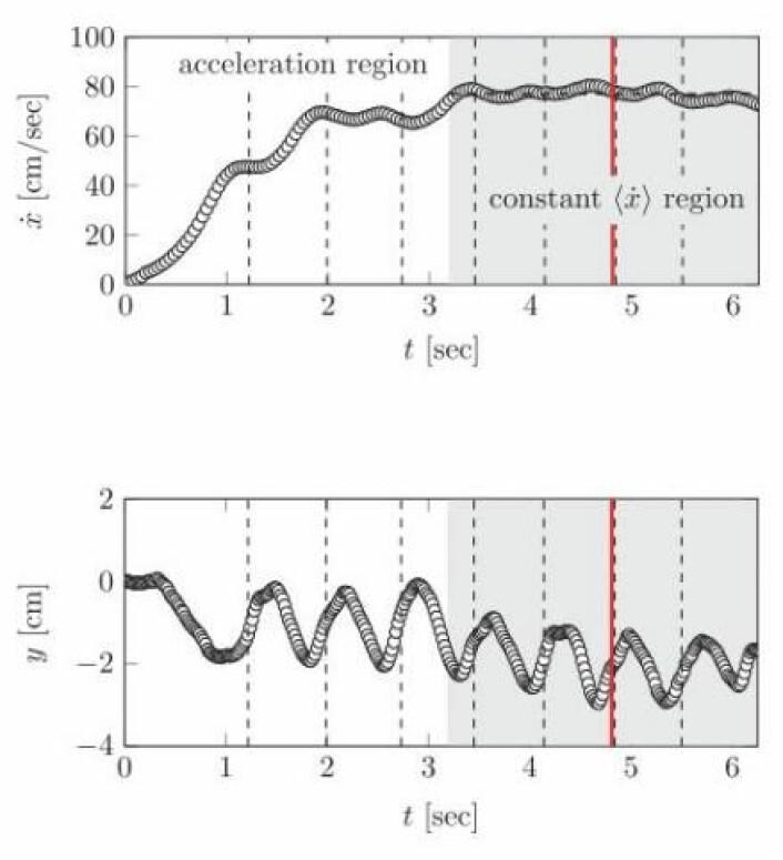 Grafer fra den vitenskapelige artikkelen: Over: koppens fart framover; nederst: koppens opp- og nedturer. Første søl er markert med den røde linjen. (Foto: (Illustrasjon: Mayer og Krechetnikov))