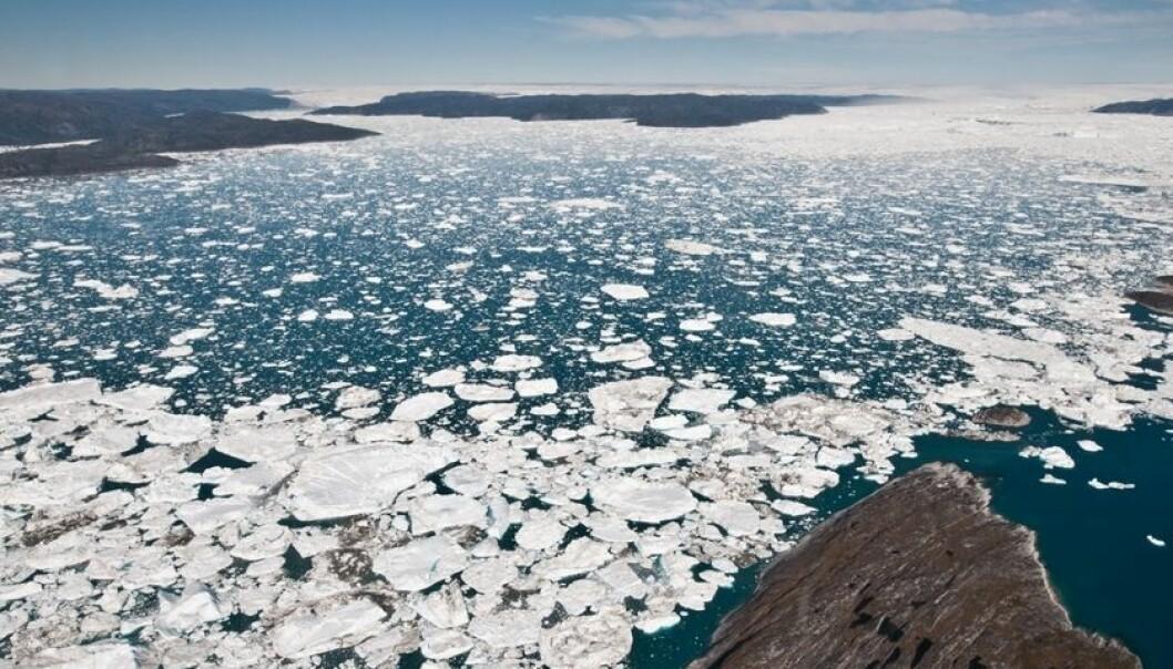 Jakobshavn isbre på Grønland er den breen i verden som raskest kaster av seg is til havet. Den nye studien viser nå at to tredjedeler av den isen som har forsvunnet de siste to tiårene, har blitt borte fra Grønland. Ian Joughin/University of Washington
