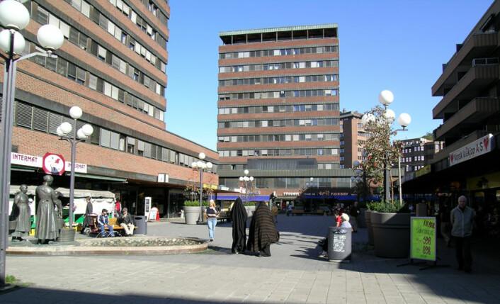 I følge avtalen om utviklingen av Tøyen, skal Tøyensenteret revitaliseres. (Foto: Wikimedia commons)