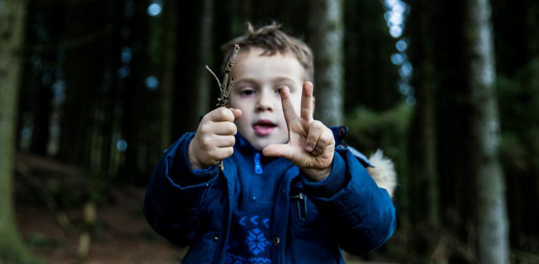 Et av hovedfunnene til Dieuwer ten Braak er at det er en sterk sammenheng mellom barns selvregulering og matematisk ferdigheter.