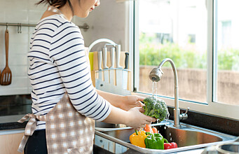 Is your kitchen clean enough?