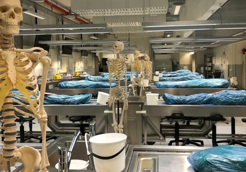 Nine hundred people from one Norwegian county donated their bodies to research when they die. Why?