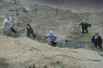 """""""Forskerne må ofte grave seg både ned og inn i elveskjæringen før de finner gode snitt. Her er fra venstre Udo Müller, Maria Jensen, Astrid Lyså, Denis Kuznetsov og Eiliv Larsen."""""""
