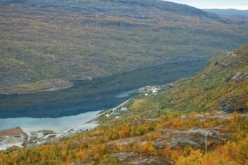 Langvatnet i Sulitjelma - vakkert, men forurenset fra tidligere gruvedrift. (Foto: Eigil Iversen)