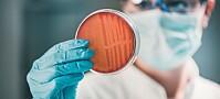 Lovende ny metode for å bekjempe antibiotikaresistente bakterier