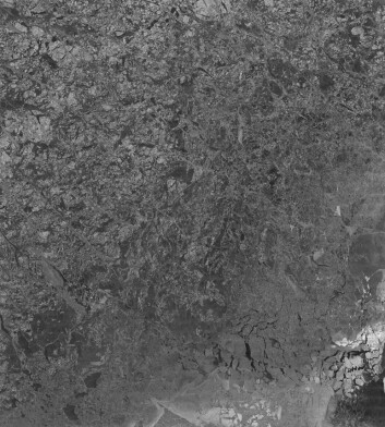 Satellittbilde av sjøis. Mørke områder er sannsynligvis nyfrosset is, mens områder med høyere intensitet er ruhet, og kan tyde på flerårsis. Foto: Institutt for fysikk og teknologi, UiT